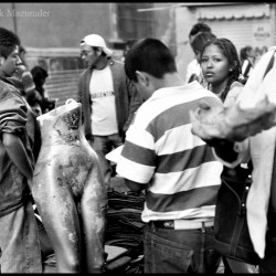 Street vendors, Mexico City, 2006
