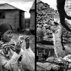Uros girl with camera, Lake Titicaca;  Lama/Alpaca market near Pisac