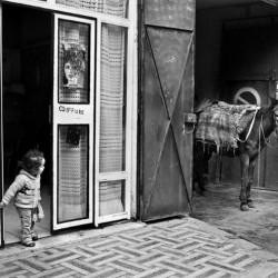 Hair salon, Tangier